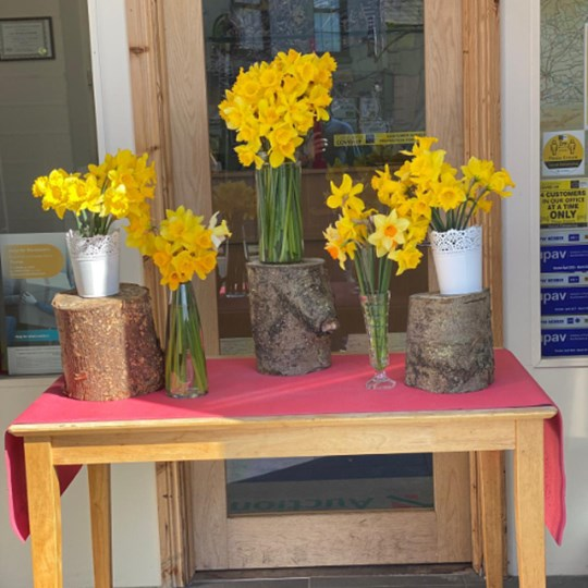 Maher Daffodil day   fundraiser