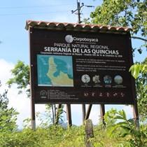 Las Quinchas COVID-19 Relief