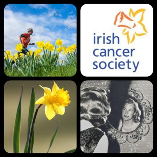 RunWalk 5 or 10k on Daffodil Day Friday 26th March