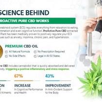 ProActive Pure  CBD Oil