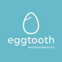 Eggtooth Project Emerging Musicians