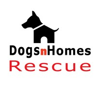 DogsnHomes Rescue