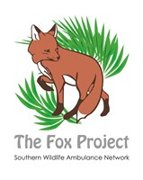 THE FOX PROJECT / SOUTHERN WILDLIFE AMBULANCE NETWORK