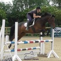 Hesteyri Horses