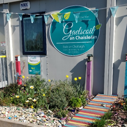 Gaelscoil an Chaisleain Daffodil Day 2021