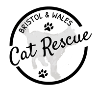 BRISTOL AND WALES CAT RESCUE