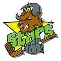 Oxford Junior Stars Ice Hockey Club
