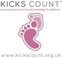 Image result for kicks count