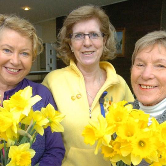 Ashbourne Daffodil Day