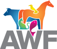 Animal Welfare Foundation
