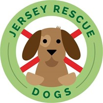 Jersey Rescue Dogs Alison Le Feuvre
