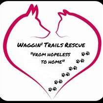 Waggin' Trails Rescue  Reg Charity 1172184