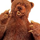 Andy Bear