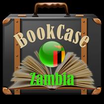 Bookcase Zambia Hermitage Academy