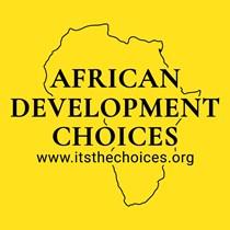 African Development Choices