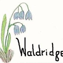 Waldridge Parish Council