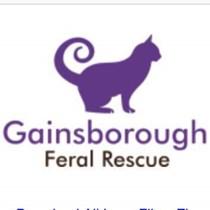Feral rescue Gainsborough