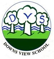 Friends of Downs View School