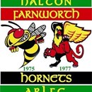 Halton Hornets