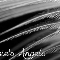 Angie's  Angels Community Group CIC