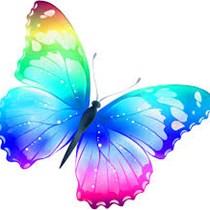 Blue Group Butterfly Walk