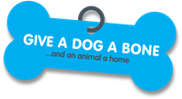 Give a Dog a Bone... and an animal a home