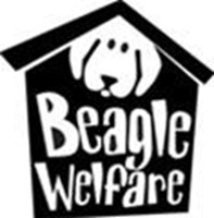 Beagle Welfare