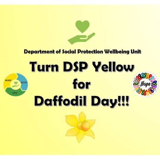 DSP Turns Yellow for Daffodil Day