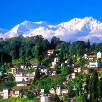 Trustees of Darjeeling Children's Trust