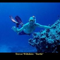 Trevor wiltshire