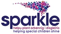 Sparkle Appeal - South Gwent Children's Foundation