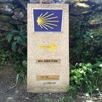 Aoife G Camino walk