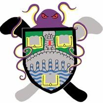 University of Stirling  Underwater Hockey