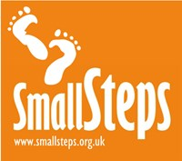 Small Steps SFP