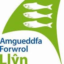 Amgueddfa Forwrol Llyn Maritime Museum