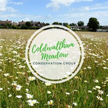 Coldwaltham Meadow Conservation Group