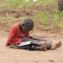 FEED-Africa Foundation