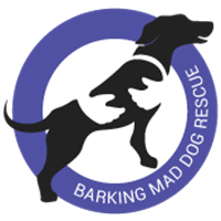 Barking Mad Dog Rescue