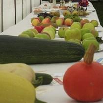 Chew Stoke Harvest Home