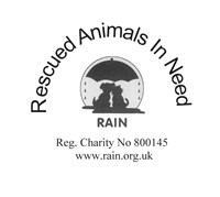 Rescued Animals in Need