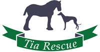Tia Greyhound & Lurcher Rescue