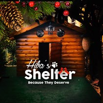 Hiba Shelter